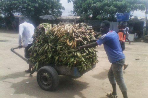 Article : JEUNESSE IVOIRIENNE: Ces métiers qui font vivre!